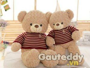 Gấu Teddy Choco - gauteddy.vn
