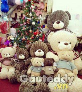 Shop Gấu Bông Đẹp tại làng đại học - gauteddy.vn
