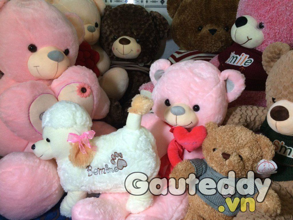 Gấu Bông Pink