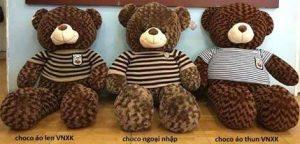 So sánh gấu bông - gauteddy.vn
