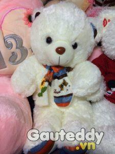 Gấu Bông Nơ Color