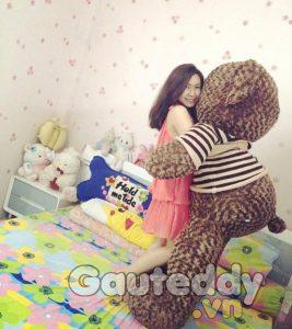 Gấu Bông Size To - gauteddy.vn