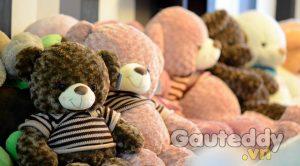 Shop Gấu Bông Đẹp - gauteddy.vn