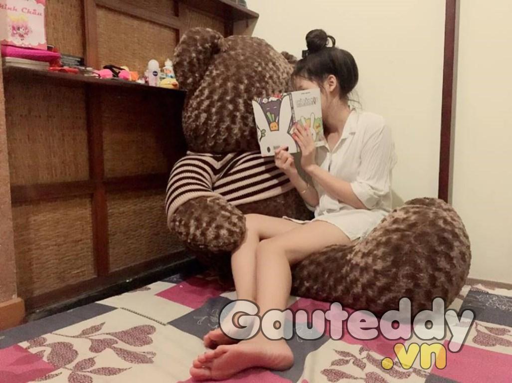 Gấu Teddy Má Hồng - gauteddy.vn