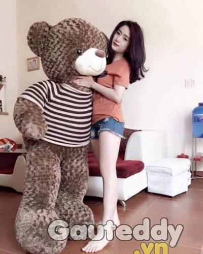 Gấu Teddy Má Hồng – gauteddy.vn