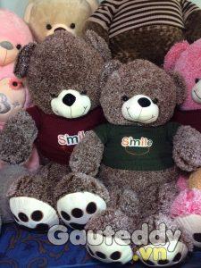 Gấu Teddy Áo Len - gauteddy.vn