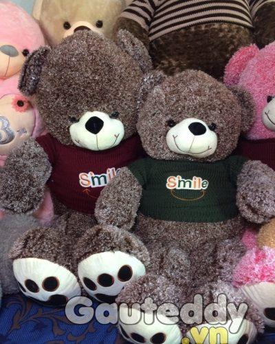 Gấu Teddy Áo Len – gauteddy.vn