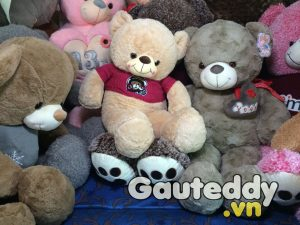 Gấu Teddy MonKey Smile - gauteddy.vn