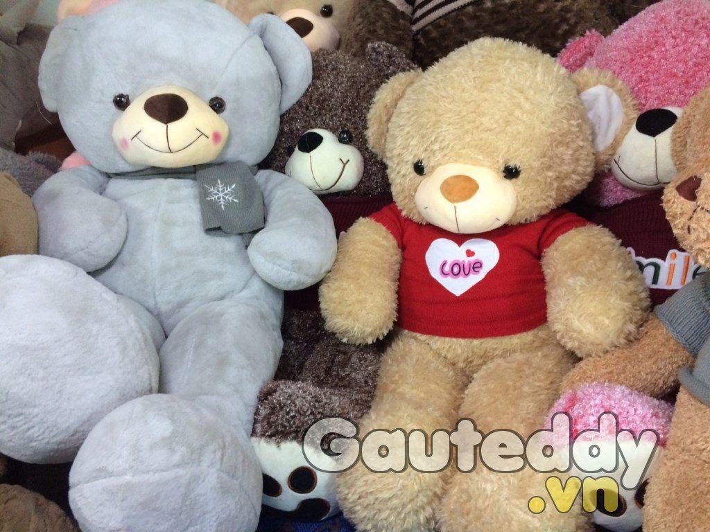 Gấu Teddy Orange Love - gauteddy.vn