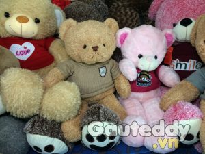 Gấu Teddy Pink HucsBaby - gauteddy.vn
