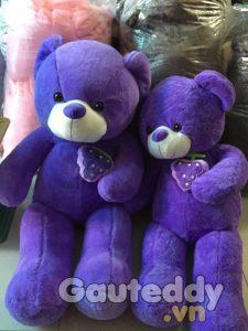 Gấu Teddy Tím Ôm Nho - gauteddy.vn