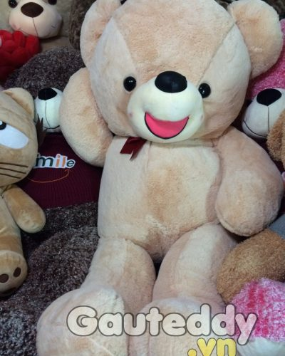 Gấu Teddy Lmao Nơ Đỏ – gauteddy.vn