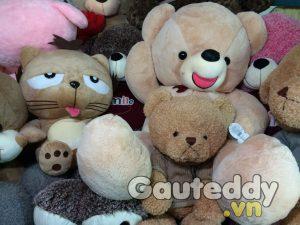 Gấu Teddy Lmao Nơ Đỏ - gauteddy.vn