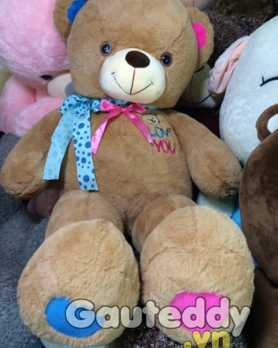 Gấu Teddy Two Color - gauteddy.vn