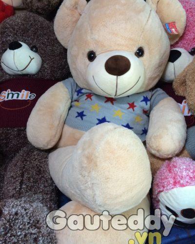 Gấu Bông Teddy Áo Sao – gauteddy.vn
