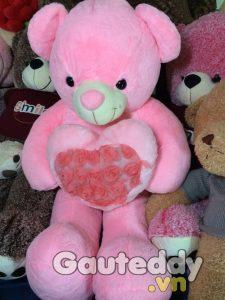Gấu Teddy Pink Ôm Tim - gauteddy.vn