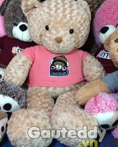 Gấu Teddy HucsBaby – gauteddy.vn