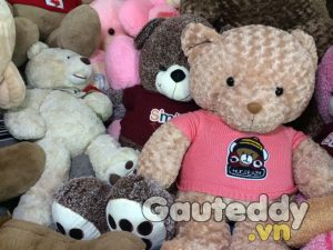 Gấu Teddy HucsBaby - gauteddy.vn