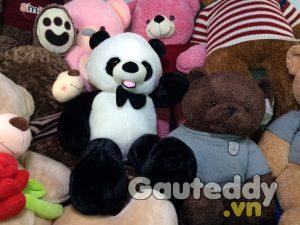 Gấu Trúc Bông - gauteddy.vn