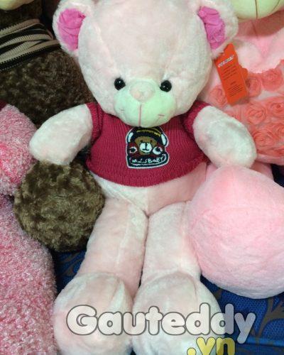 gau-bong-teddy (195)