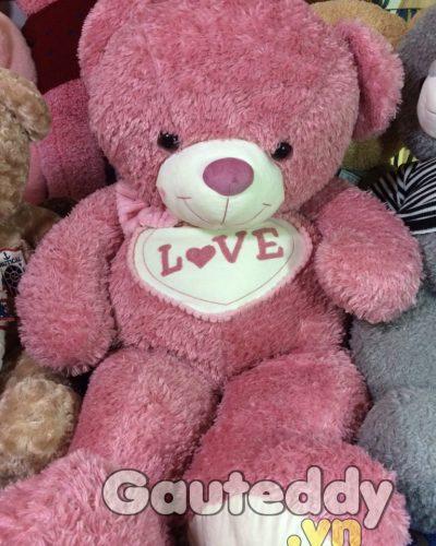 Gấu Teddy Pink Love – gauteddy.vn