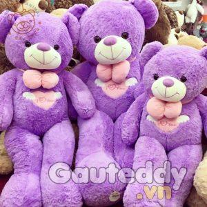 Gấu Bông Lavender - gauteddy.vn