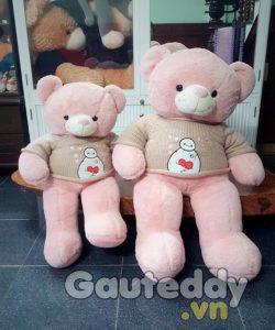 Gấu Teddy BayMax