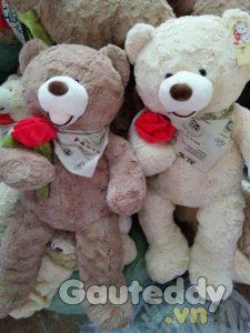 Gấu Teddy Ôm Hoa - gauteddy.vn