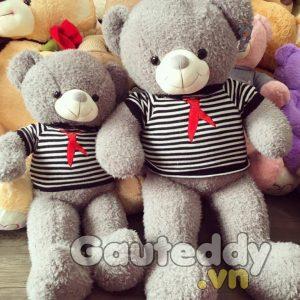 Gấu Teddy Xám Sọc - gauteddy.vn