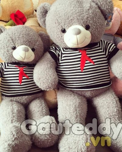 Gấu Teddy Xám Sọc – gauteddy.vn