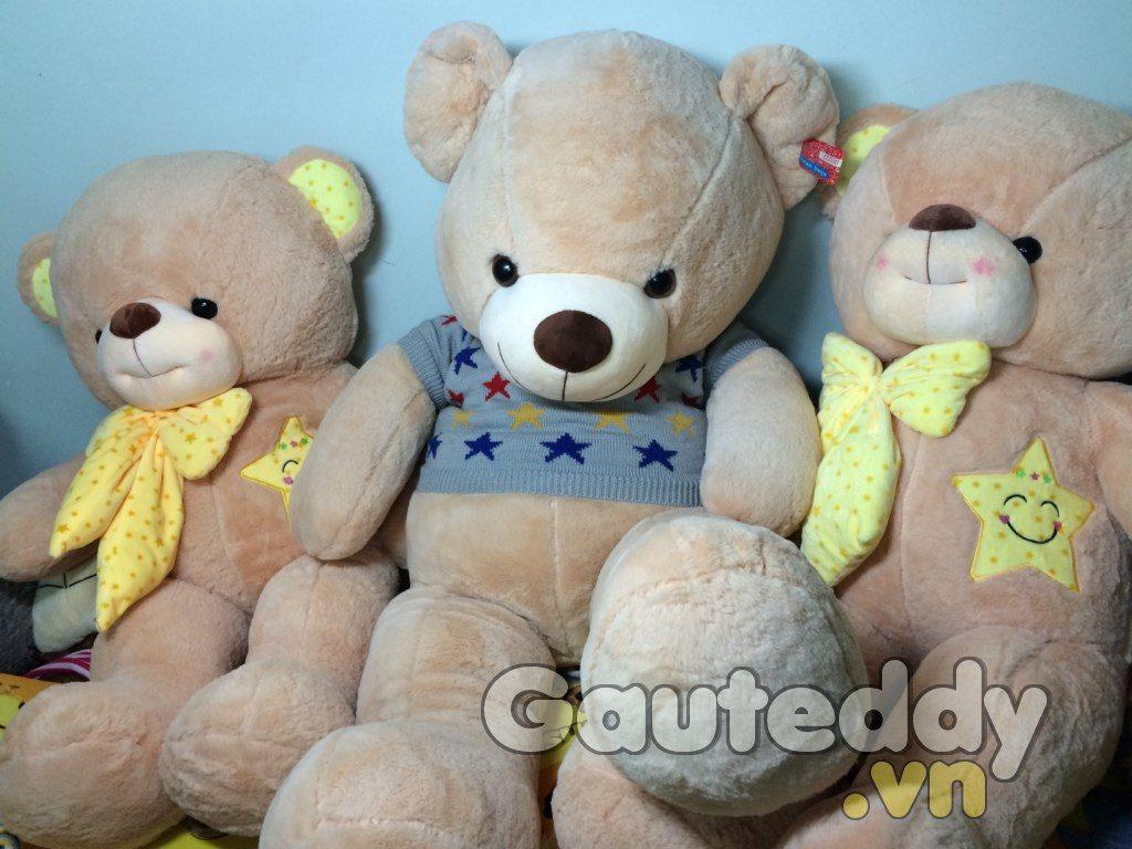 Gấu Bông Teddy Áo Sao - gauteddy.vn