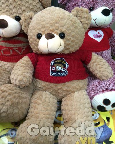 gau-bong-teddy (75)