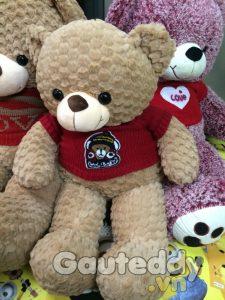 Gấu Teddy Monkey - gauteddy.vn