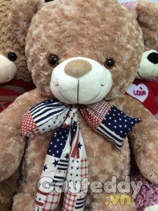 Gấu Teddy Nơ Mỹ - gauteddy.vn