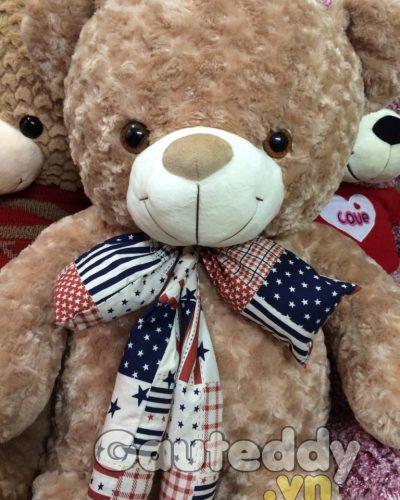 Gấu Teddy Nơ Mỹ – gauteddy.vn