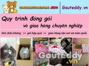 Dịch vụ shop gấu teddy - gauteddy.vn