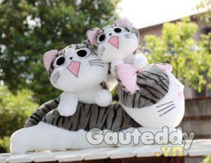 Mèo Chii - gauteddy.vn