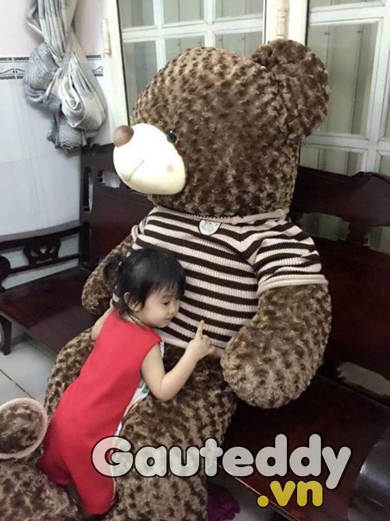 Gấu Bông Má Hồng - Gauteddy.vn