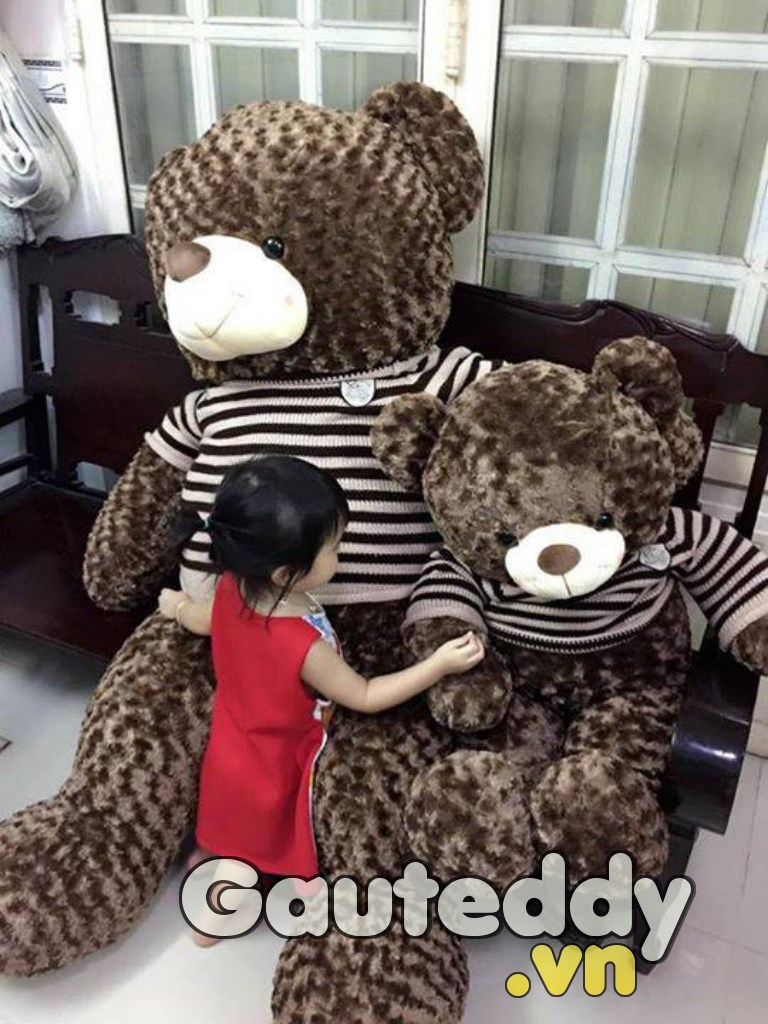 Gấu Bông Khổng Lồ