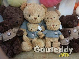 Gấu Pub - Gauteddy.vn