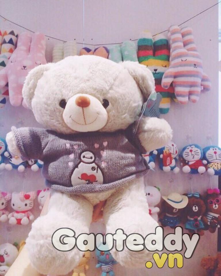 Gấu Bông Teddy - Gauteddy.vn