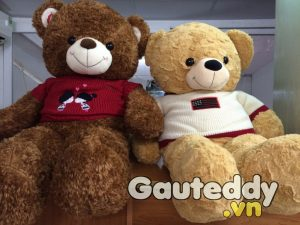 Gấu Bông Teddy Lông Vàng