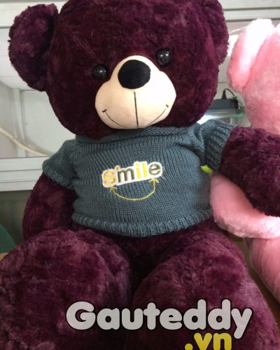 Gấu Bông Teddy Haru