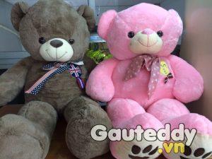 Gấu Bông Teddy Logo Anh