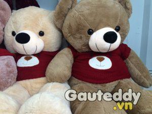 Gấu Bông Teddy Áo Gấu
