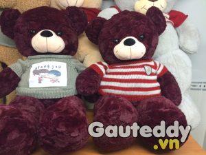 Gấu Bông Teddy Củ Dền Sọc Đỏ