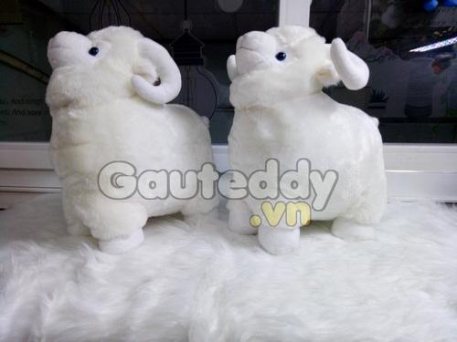 Cừu Bông