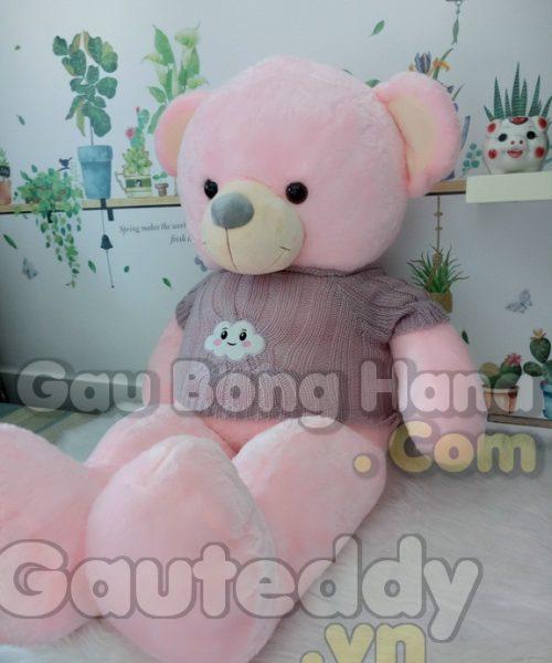 Gấu Teddy Pink Cloudlet