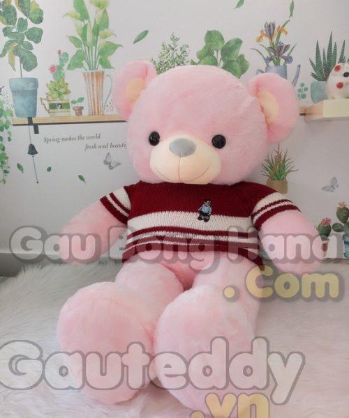 Gấu Teddy Pink Áo Sọc