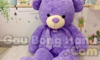 Gấu Teddy Purple Star